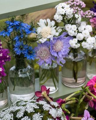 wpid11411-Cut-Summer-Flowers-GORB086-nicola-stocken.jpg