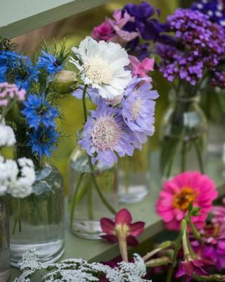wpid11413-Cut-Summer-Flowers-GORB092-nicola-stocken.jpg