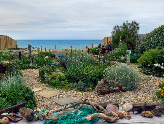 wpid11429-A-Seaside-Garden-in-June-GSOL003-nicola-stocken.jpg