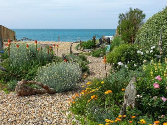 wpid11431-A-Seaside-Garden-in-June-GSOL006-nicola-stocken.jpg