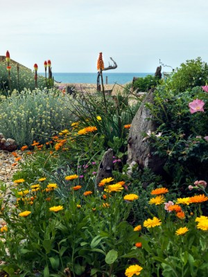 wpid11433-A-Seaside-Garden-in-June-GSOL010-nicola-stocken.jpg