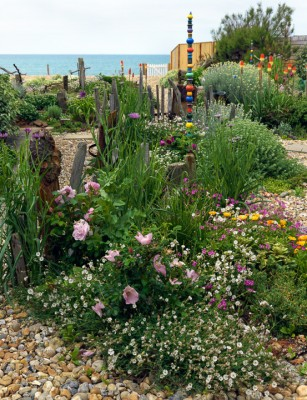 wpid11437-A-Seaside-Garden-in-June-GSOL014-nicola-stocken.jpg