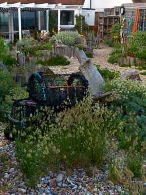 wpid11457-A-Seaside-Garden-in-June-GSOL036-nicola-stocken.jpg