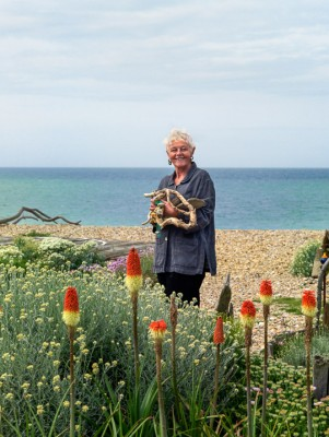 wpid11522-A-Seaside-Garden-in-June-GSOL002-nicola-stocken.jpg