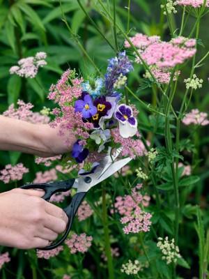 wpid11586-Flower-Pressing-QCRA036-nicola-stocken.jpg