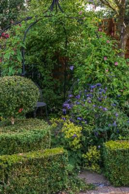 wpid11760-Valley-Road-Garden-in-June-GVAE015-nicola-stocken.jpg