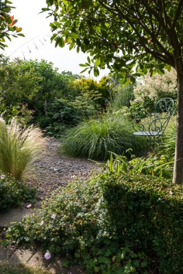 wpid11770-Valley-Road-Garden-in-June-GVAE020-nicola-stocken.jpg