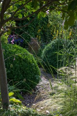wpid11776-Valley-Road-Garden-in-June-GVAE023-nicola-stocken.jpg