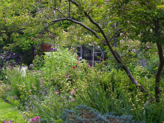 wpid11956-The-Crest-Garden-in-June-GTHC011-nicola-stocken.jpg