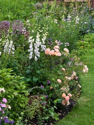 wpid11962-The-Crest-Garden-in-June-GTHC014-nicola-stocken.jpg
