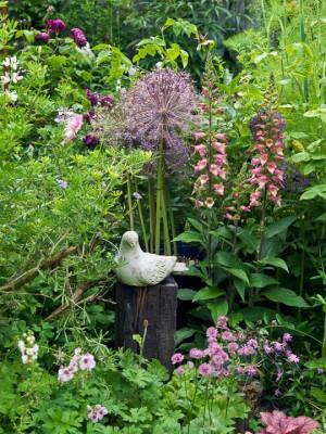 wpid11966-The-Crest-Garden-in-June-GTHC016-nicola-stocken.jpg