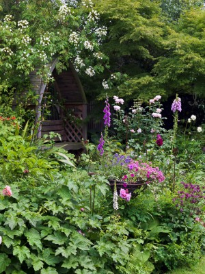 wpid11970-The-Crest-Garden-in-June-GTHC018-nicola-stocken.jpg