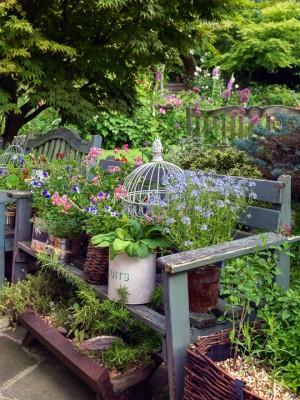wpid11994-The-Crest-Garden-in-June-GTHC030-nicola-stocken.jpg
