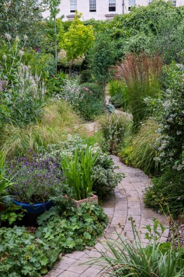wpid12059-Woodbines-Avenue-Garden-in-August-GWDB011-nicola-stocken.jpg