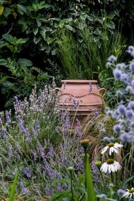 wpid12081-Woodbines-Avenue-Garden-in-August-GWDB022-nicola-stocken.jpg