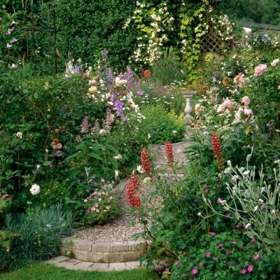 wpid9877-Up-The-Garden-Path-ASTE015-nicola-stocken.jpg