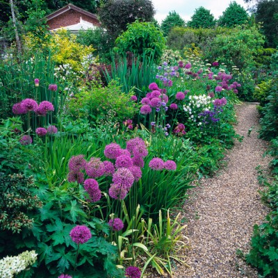 wpid9885-Up-The-Garden-Path-DHEB269-nicola-stocken.jpg