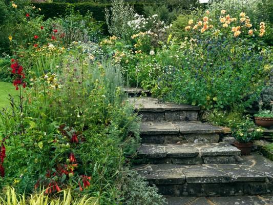 wpid9887-Up-The-Garden-Path-DWOO113-nicola-stocken.jpg