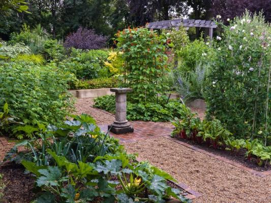 wpid9901-Up-The-Garden-Path-GBUD017-nicola-stocken.jpg