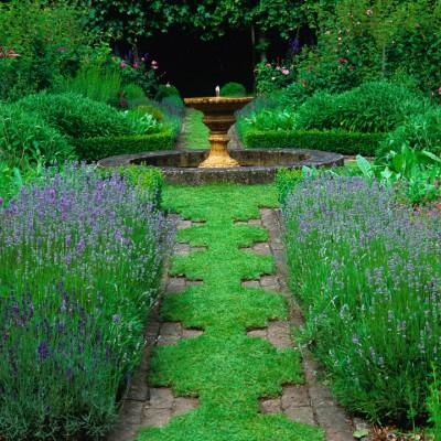 wpid9911-Up-The-Garden-Path-GCLI036-nicola-stocken.jpg