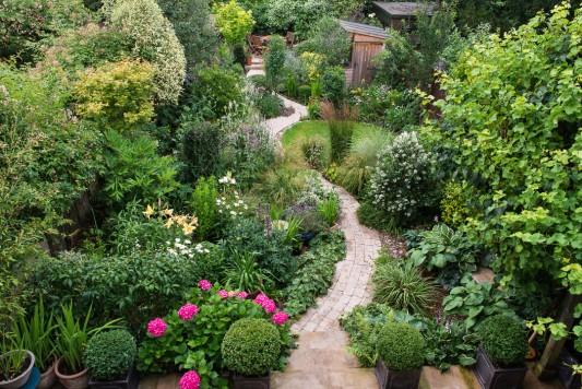 wpid9967-Up-The-Garden-Path-GWDB006-nicola-stocken.jpg