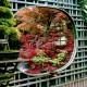 wpid9983-Garden-Rooms-with-a-View-AGLA011-nicola-stocken.jpg thumbnail
