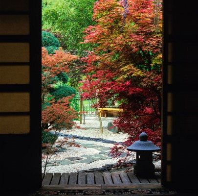 wpid9993-Garden-Rooms-with-a-View-DJAP081-nicola-stocken.jpg