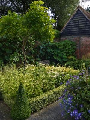 wpid12320-Stuart-Cottage-in-August-GSTU018-nicola-stocken.jpg