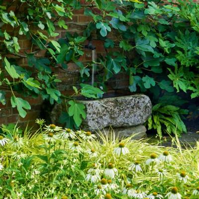 wpid12324-Stuart-Cottage-in-August-GSTU020-nicola-stocken.jpg
