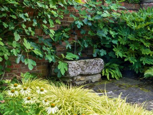 wpid12326-Stuart-Cottage-in-August-GSTU021-nicola-stocken.jpg