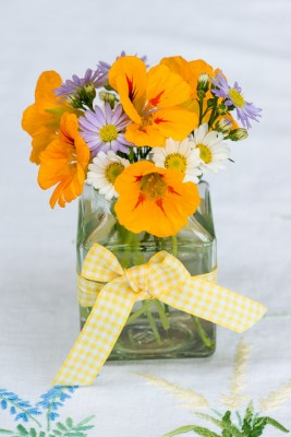 wpid12699-Posies-and-Decorative-Jars-Step-by-Step-QPOS547-nicola-stocken.jpg