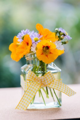 wpid12713-Posies-and-Decorative-Jars-Step-by-Step-QPOS565-nicola-stocken.jpg