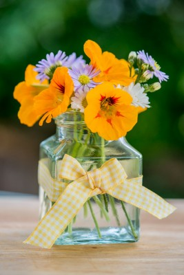 wpid12731-Posies-and-Decorative-Jars-Step-by-Step-QPOS566-nicola-stocken.jpg