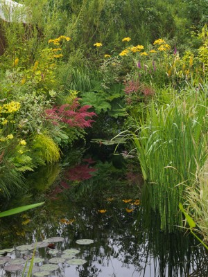 wpid13253-Water-Features-for-Gardens-DESI207-nicola-stocken.jpg