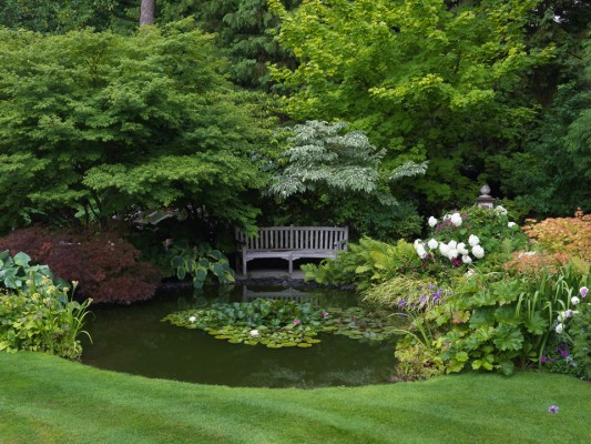 wpid13257-Water-Features-for-Gardens-GBOX106-nicola-stocken.jpg