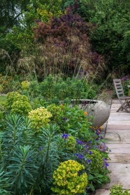wpid13274-A-Family-Town-Garden-GGLN014-nicola-stocken.jpg