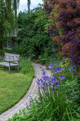 wpid13280-A-Family-Town-Garden-GGLN019-nicola-stocken.jpg