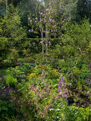 wpid13529-Sandhill-Farmhouse-in-Spring-GSAN021-nicola-stocken.jpg