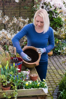 wpid14045-Planting-a-Spring-Pot-Step-by-Step-QCON003-nicola-stocken.jpg