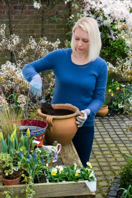 wpid14051-Planting-a-Spring-Pot-Step-by-Step-QCON006-nicola-stocken.jpg