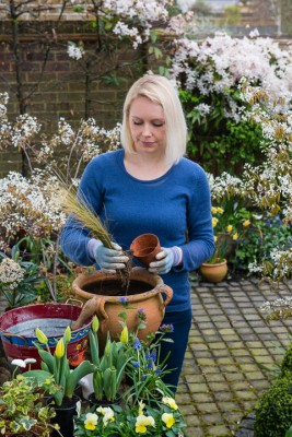 wpid14059-Planting-a-Spring-Pot-Step-by-Step-QCON010-nicola-stocken.jpg