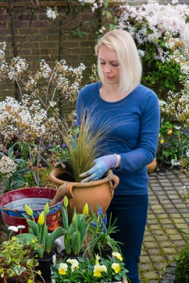 wpid14061-Planting-a-Spring-Pot-Step-by-Step-QCON011-nicola-stocken.jpg
