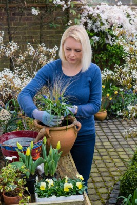 wpid14065-Planting-a-Spring-Pot-Step-by-Step-QCON012-nicola-stocken.jpg