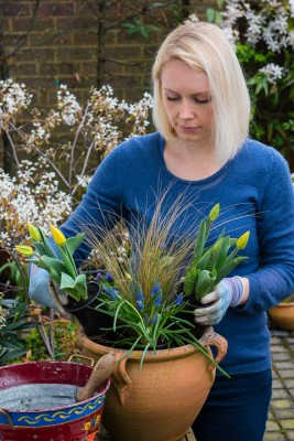 wpid14067-Planting-a-Spring-Pot-Step-by-Step-QCON013-nicola-stocken.jpg