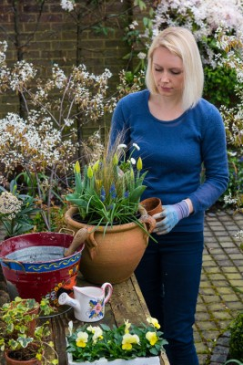 wpid14071-Planting-a-Spring-Pot-Step-by-Step-QCON015-nicola-stocken.jpg