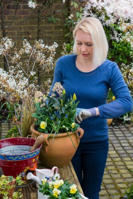 wpid14077-Planting-a-Spring-Pot-Step-by-Step-QCON018-nicola-stocken.jpg