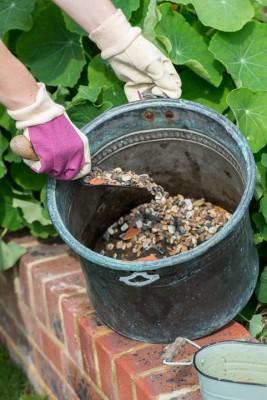 wpid14219-Step-by-Step-Planting-a-Summer-Pot-QCON085-nicola-stocken.jpg