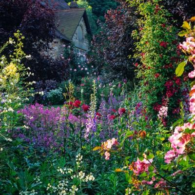 wpid14379-Photographing-Gardens-FBED021-nicola-stocken.jpg