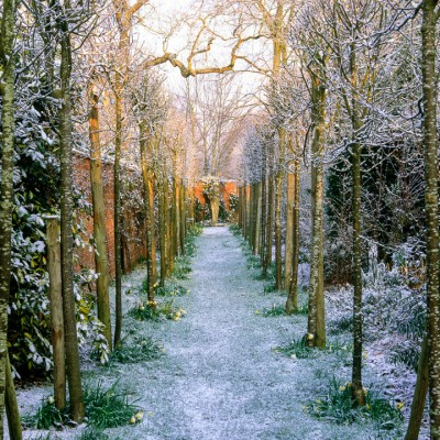 wpid14381-Photographing-Gardens-FWIN126-nicola-stocken.jpg