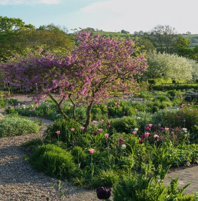 wpid14403-Photographing-Gardens-GHOF021-nicola-stocken.jpg